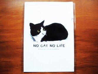 イラストクリアファイル/NO CAT NO LIFEの画像