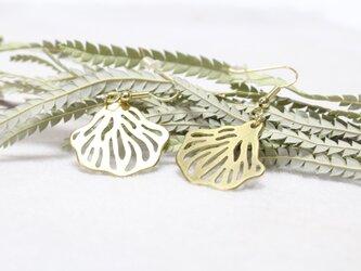 flutter earringsの画像