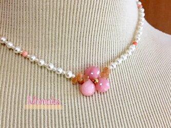 Momoka(桃花)の画像