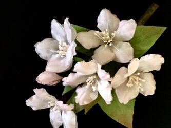 桜のコサージュ  Aの画像