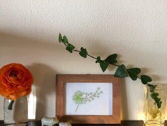 手刺繍 壁飾り  Fluff of dandelion わた毛の画像