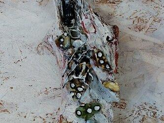 流木アート「浜辺の記憶」の画像