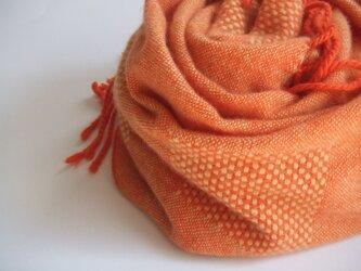 手織りカシミアストール・・みかんの画像