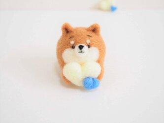 ホワイトハートチョコを持つまゆ柴犬 羊毛フェルト【受注製作】の画像