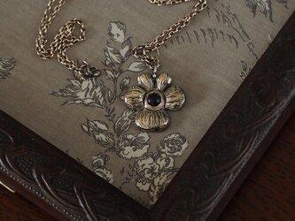 花をさがしに アイオライトの画像