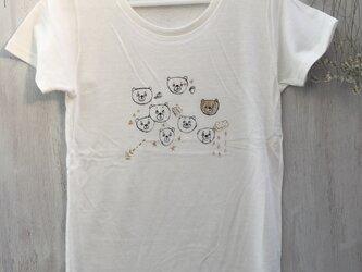 いろいろくま レトロ レディース ティーシャツTシャツ の画像