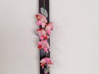 もう!桜の画像