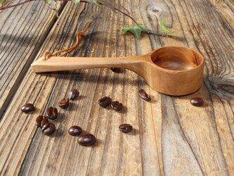 コーヒーメジャー サクラ古木の画像