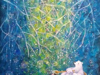 星降る森(F4)の画像