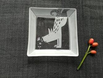 イヌ角皿    サカダチ の画像