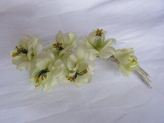 淡い黄緑色の桜コサージュの画像