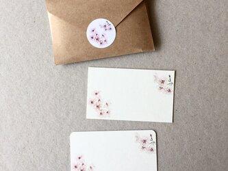 桜のメッセージカード 20枚の画像