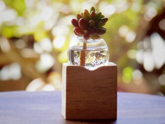 小さな吹きガラスの一輪挿し マンゴーの木(木材種類)の画像