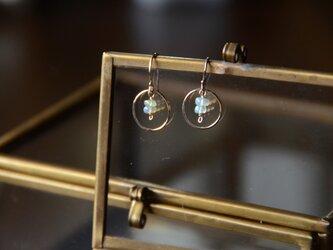 金色の環〜オパール〜の画像