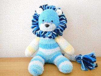 マリンブルーのソックライオンの画像