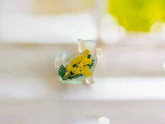 プチネコのミモザ入りブローチ(ホワイトオーロラ)の画像