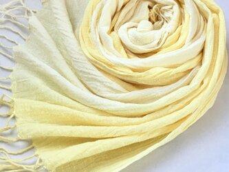 *淡檸檬色×花葉色*ミモザのコットンストールの画像
