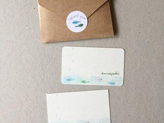 海と魚のメッセージカード サンキューカード 20枚の画像