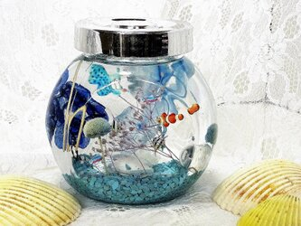 「父の日ギフト」水槽の中の熱帯魚(クリアケース入り)の画像
