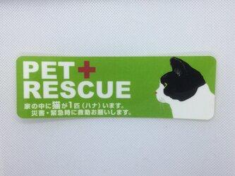 ペットレスキューステッカー 緊急時ペット保護ステッカー 犬 猫 名入れの画像