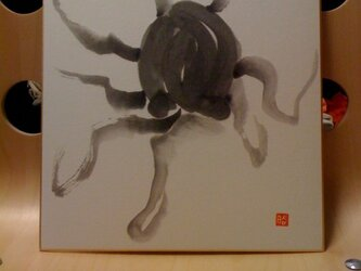 海中を舞う蛸の画像