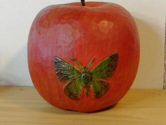 りんごに蝶の画像