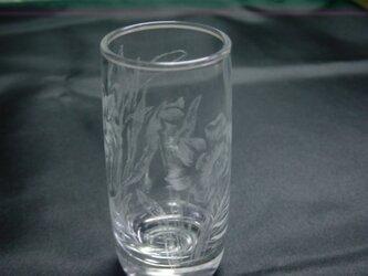 グラスリッツエン  冷酒グラス  水仙画の画像