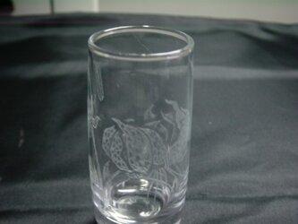 グラスリッツエン 冷酒グラス 鬼百合画の画像