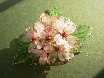 桜の囁き2(クリップ付コサージュ)の画像