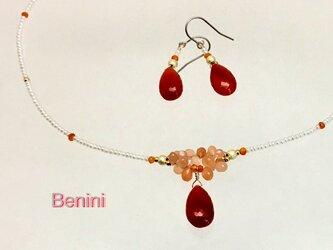 Benini(ベニーニ)の画像