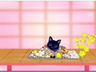 「いらっしゃいませ~^^」 ほっこり癒しのイラストポストカード2枚組No.717の画像
