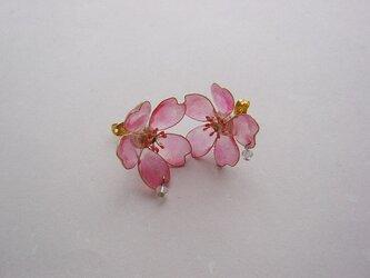 桜の滴(ピアス)の画像