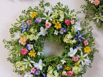 大きめ・優しい小花のリースE(35センチ)の画像