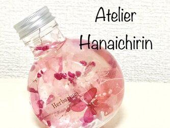 ころんとハーバリウム  Sakura hubukiの画像
