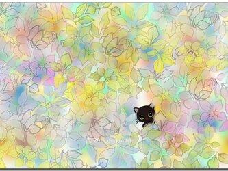 「呼んだ?ニャンか用?^^」 ほっこり癒しのイラストポストカード2枚組No.719の画像