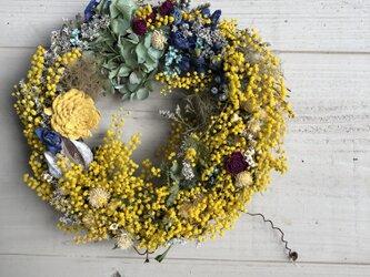 春のミモザ、ドライフラワーリースの画像