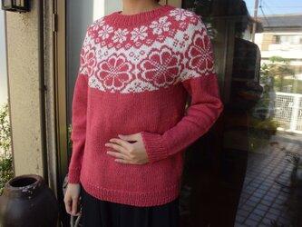 コットンウールセーターの画像