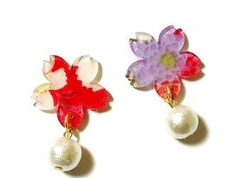 【和】和柄ちりめんの桜ピアス / イヤリングの画像