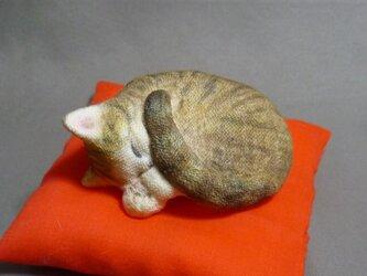 h様オーダー品 アンモニャイト キジトラ猫さん 座布団付の画像