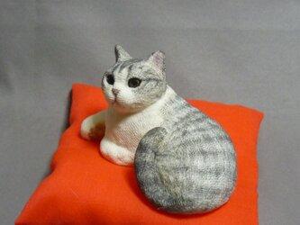 h様オーダー品 手乗り猫 サバ白猫さん 座布団付の画像