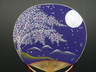 寒月桜の画像