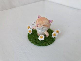 春を感じて猫さんの画像