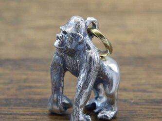 ゴリラ『ペンダント』 Gorilla gorilla:PH-77の画像