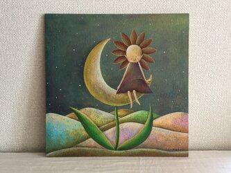 月の花の画像