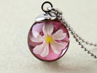 桜しずくのペンダント1の画像