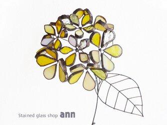 ステンドグラス 紫陽花C190309-Yの画像