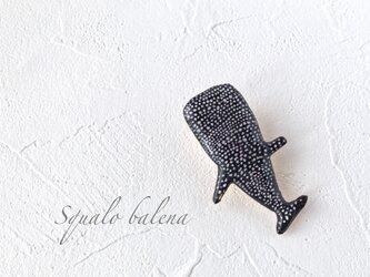 ジンベエザメのブローチ(ボックス入り)の画像