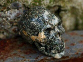 プレセリブルーストーン(ストーンヘンジストーン) スカルの画像