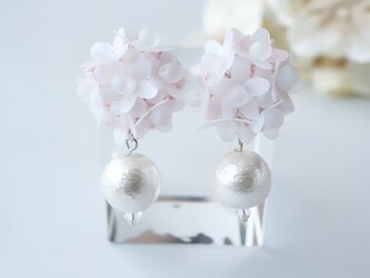 桜の耳飾りの画像