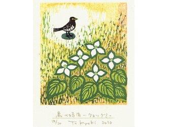 多色摺木版画「鳥の時間ークロツグミ」額付きの画像